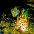 Botanische Nacht 04